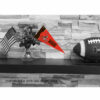 Cleveland Browns Mini Pennant 9X4 inch