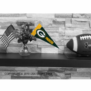 NFL Green Bay Packers Mini Pennant 9x4 inch