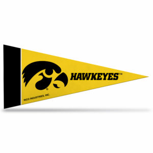Iowa Hawkeyes NCAA Mini Pennant 9X4 inch, felt
