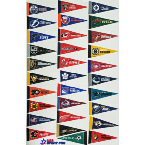 NHL Mini pennant Set 31 teams 2